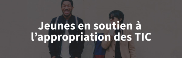 Appropriation des TIC