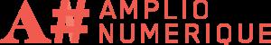 AMPLIO logo 300x50 - Liste Stages compétences numériques